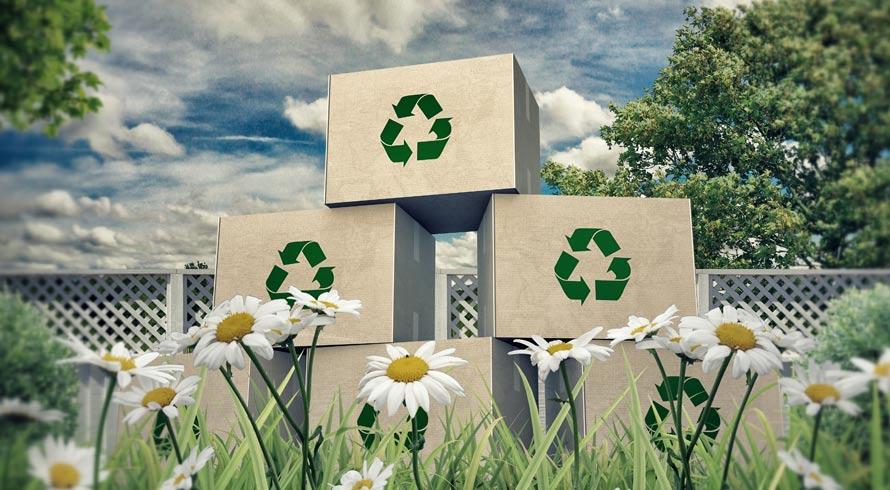 5 de junho: Dia Nacional da Reciclagem!
