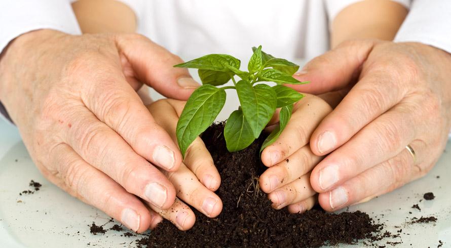 Universidade Castelo Branco oferece pós-graduação, à distância, em Educação Ambiental. Confira!