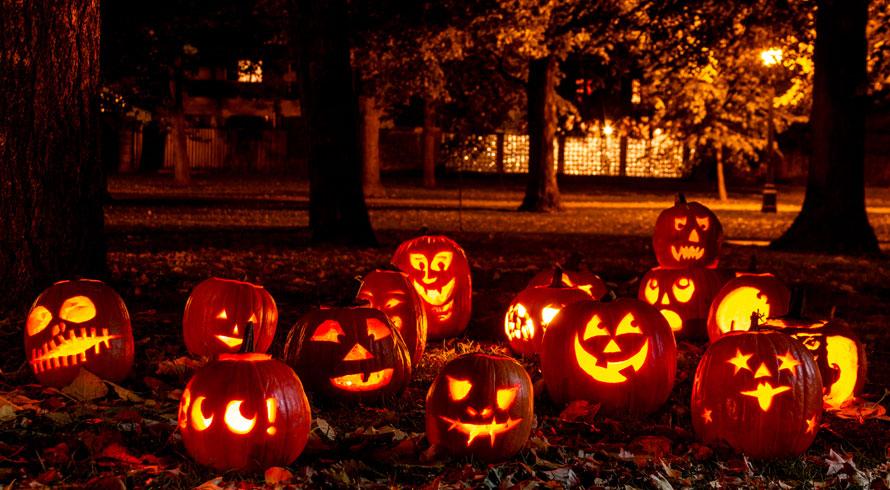 Após mais uma edição cheia de possibilidades de diversão, Halloween ganha contornos de...