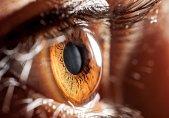 Com um exame de fundo de olho, oftalmologistas podem identificar doenças graves no corpo, sabia?