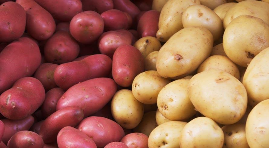 Desafio da batata: entre a doce e a inglesa, qual é a mais saudável?