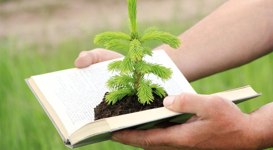 Dia de comemorarmos a Educação Ambiental