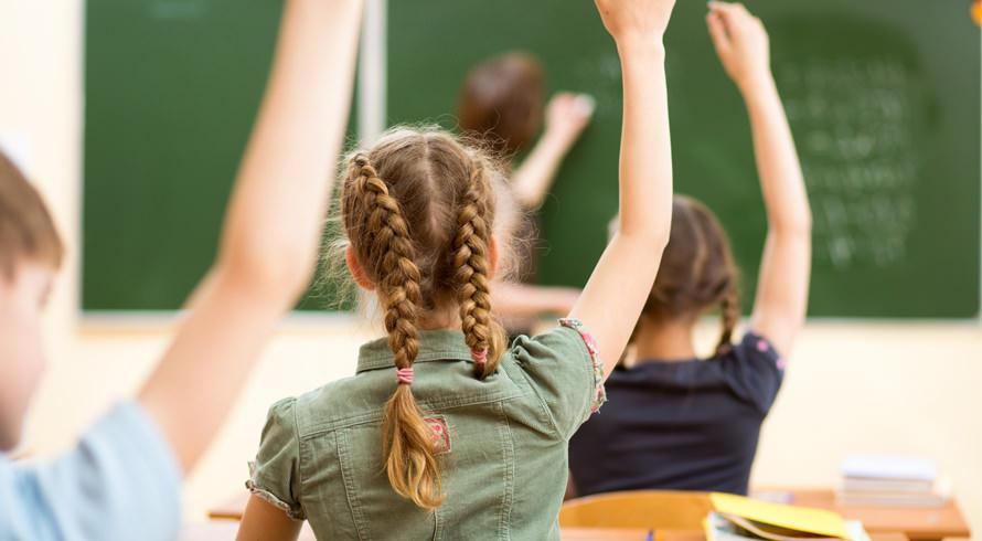 Educação infantil: hoje, 25 de agosto, é dia de comemorá-la!