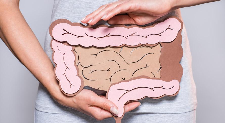 O poder de uma microbiota adequada: a saúde do seu intestino tem total relação com o seu estado de humor, sabia?