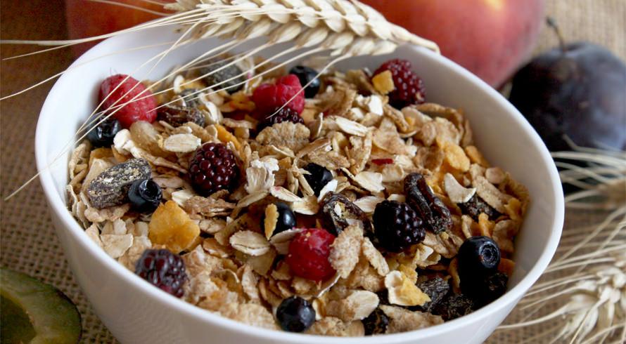 Sua alimentação diária conta com a quantidade indicada de fibras?