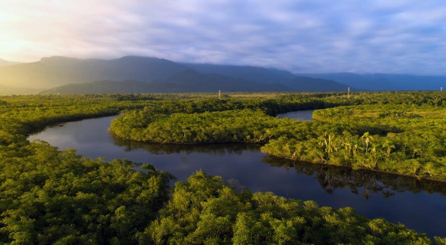 Tesouros da Amazônia: arqueólogos descobrem ilhas artificiais construídas no período pré-colonial