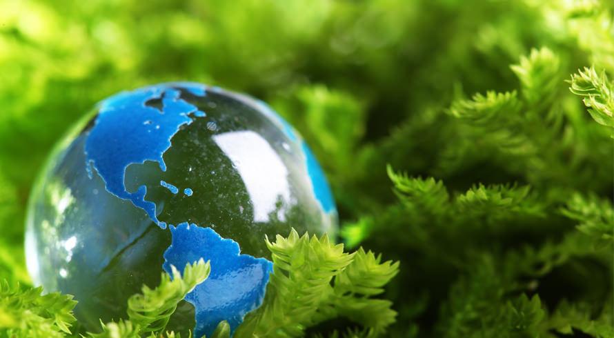 """UCB oferece curso de pós-graduação, à distância, em """"Gestão e Licenciamento Ambiental"""""""