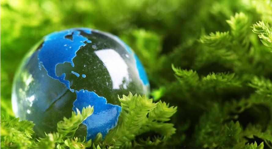 UCB oferece cursos de pós-graduação, à distância, na área Ambiental. São três! Escolha o seu e dê início à sua evolução acadêmica