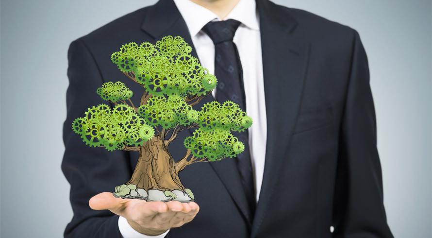 """UCB oferece """"MBA em Gestão Ambiental de Empresas"""" à distância. Especialize-se e torne-se o(a) profissional que o mundo corporativo busca"""