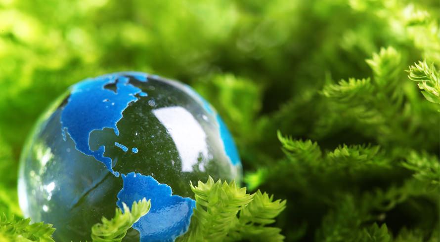 """Universidade Castelo Branco apresenta o curso de pós-graduação, à distância, """"Docência na Educação Ambiental"""". Seja um (a) zelador (a) da natureza!"""