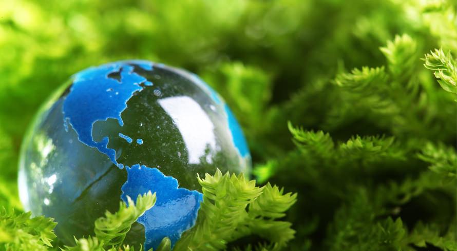 Vem conferir os cursos de pós-graduação, à distância, que nós, da Universidade Castelo Branco, oferecemos para você na área Ambiental