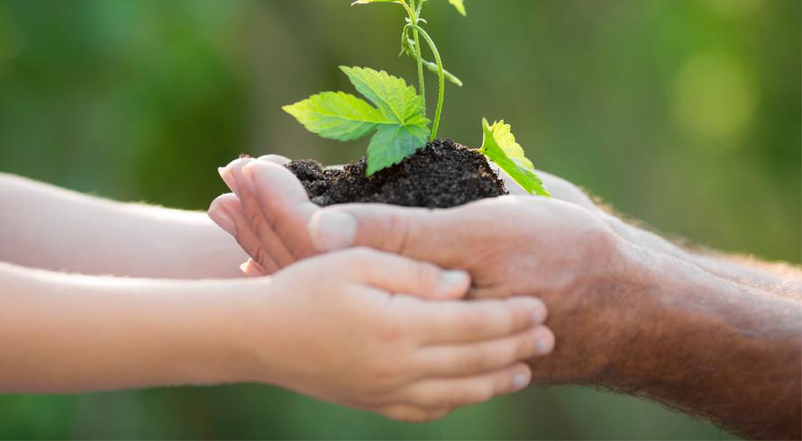 Dia da Educação Ambiental!