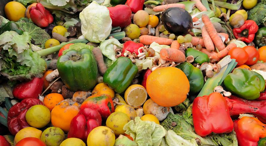 Se quisermos, em futuro breve, contar com uma população mundial nutrida é preciso, desde já, combater o desperdício de alimentos