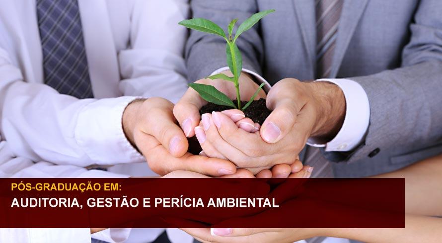 AUDITORIA, GESTÃO E PERÍCIA AMBIENTAL