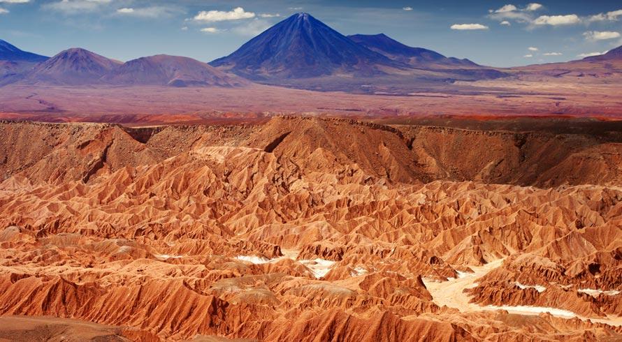 E quando todos esperavam que a chuva no Atacama – com atraso de 500 anos – fosse devolver vida à região, surpresa, os micróbios locais morreram