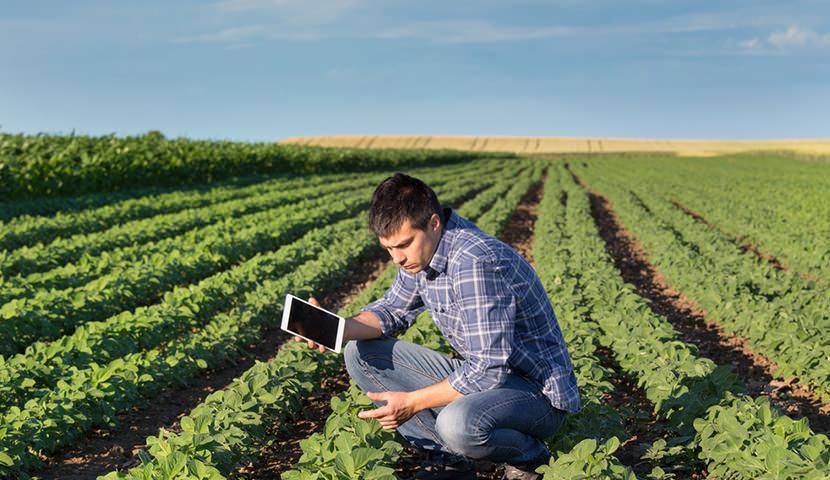 Centro Universitário Redentor oferece cursos de pós-graduação na área de Agricultura. Imperdível!