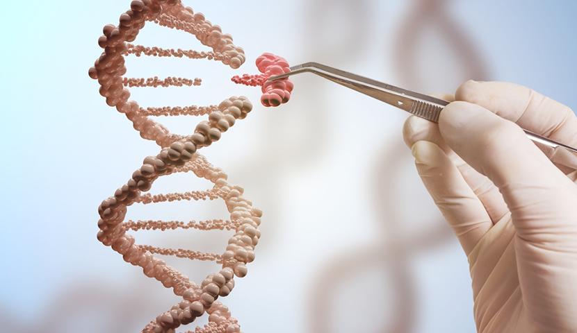 Síndrome de Prader-Willi, uma anomalia genética que afeta a produção do hormônio do crescimento