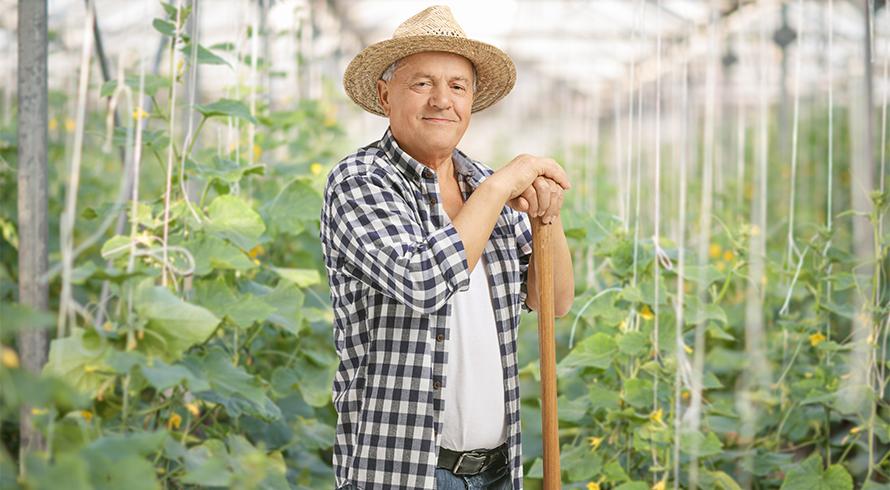 Uma justa homenagem àquele(a) que cultiva a terra e nos viabiliza a – vital – alimentação