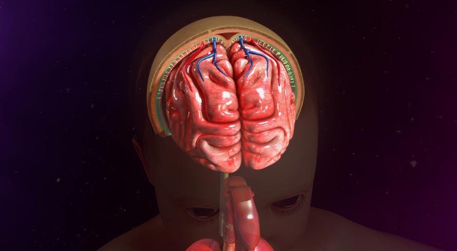 Saiba mais sobre a meningite