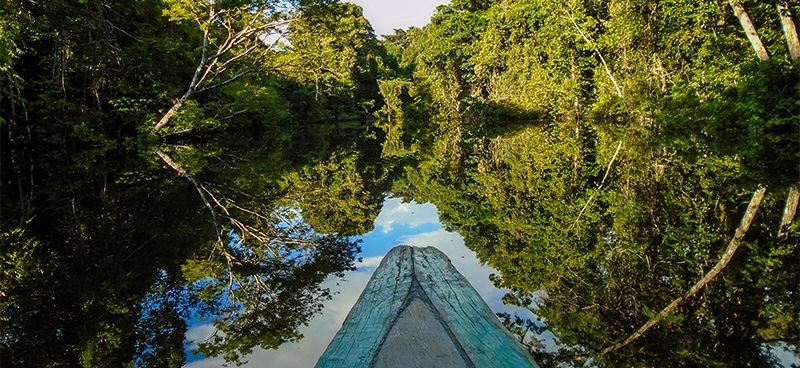 Amazônia: na aflição de protegê-la ignora-se as opiniões dos que moram nela, deixando-os expostos à iminência do caos alimentado por decretos presidenciais