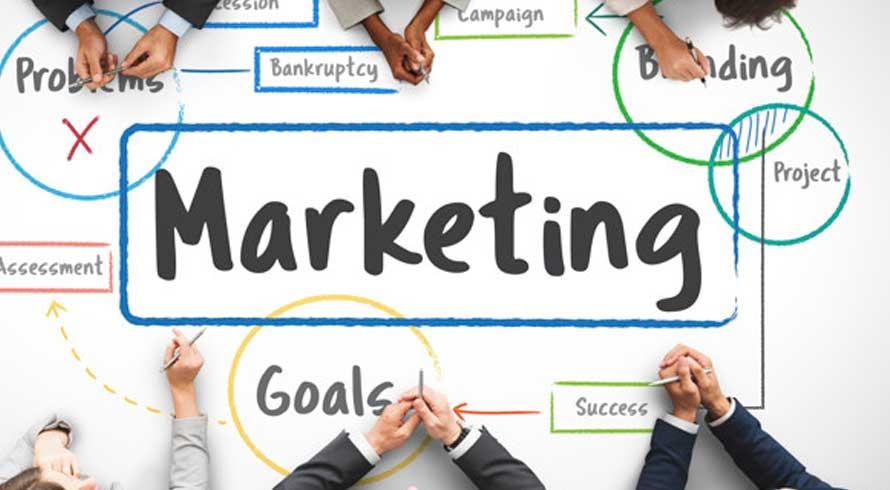 Confira dicas para ser o (a) melhor Gerente de Marketing