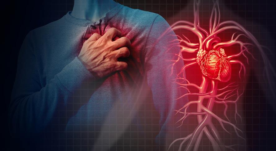 Estudo da USP indica que nível de enzima no plasma sanguíneo pode detectar possível doença cardiovascular